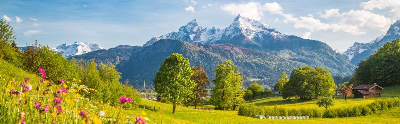 Bayerrischer Wald Wandern neu